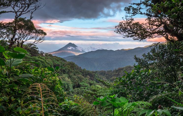 mapa selva Costa Rica
