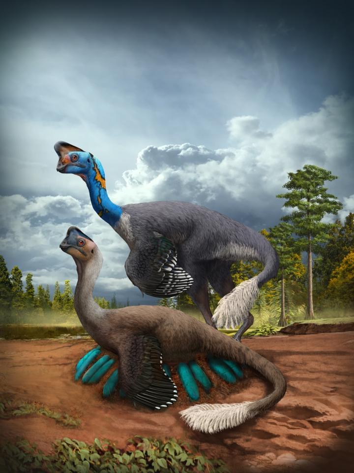oviraptorosaurio