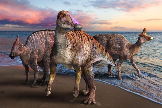 Yamatosaurus