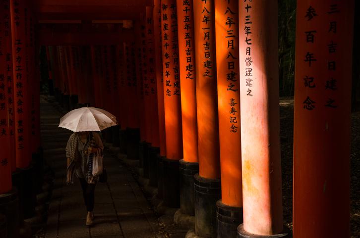 arcos torii