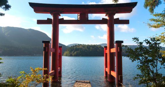 arcos torii en Japón