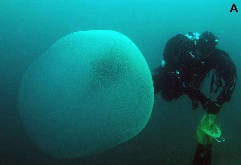 Resuelven misterio sobre globos marinos que aparecieron en las costas de Noruega (+ Foto)