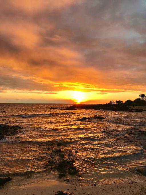 que ver y hacer en hawaii