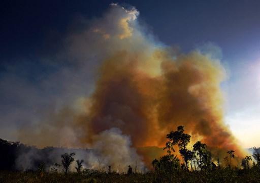incendios del amazonas