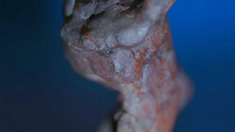 Descubren posible huella dactilar de Miguel Ángel en una de sus esculturas (+ Fotos)