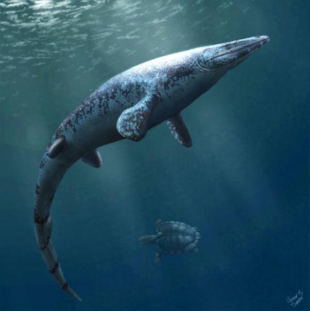 mosasaurio
