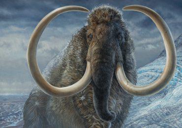 mamut viajero