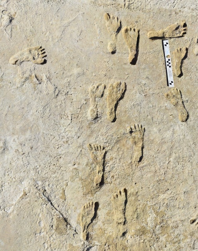 White Sands huellas humanas1