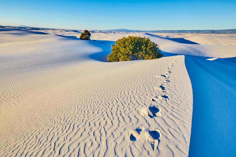 white sands huellas humanas