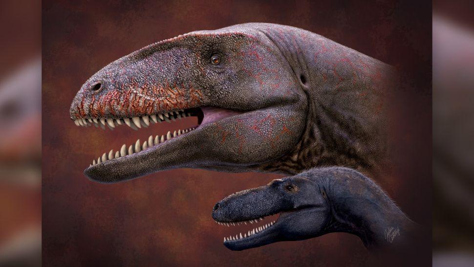carcharodontosaurio