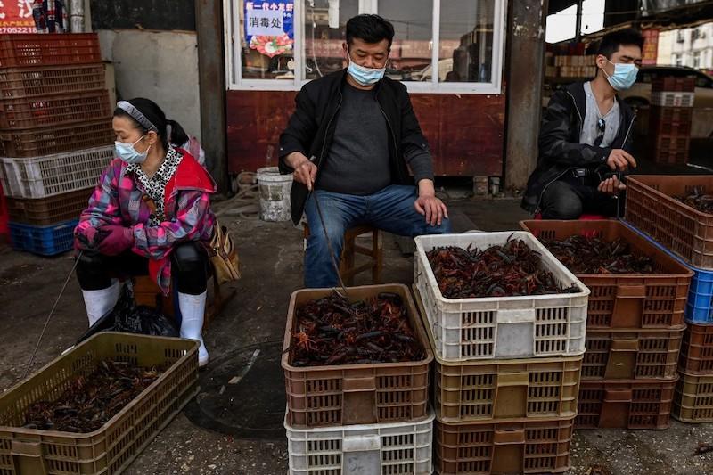 China coronavirus origen