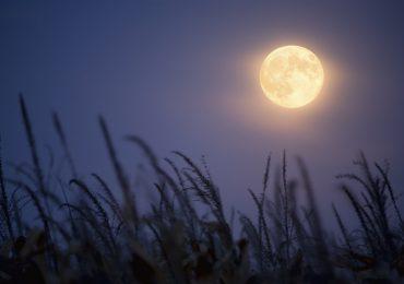 luna de maíz origen y como ver la ultima luna llena de septiembre