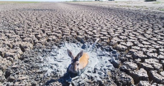 crisis del agua cambio climático