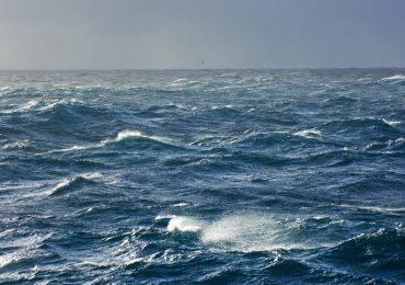 maoríes contribuyeron a la contaminación de los mares